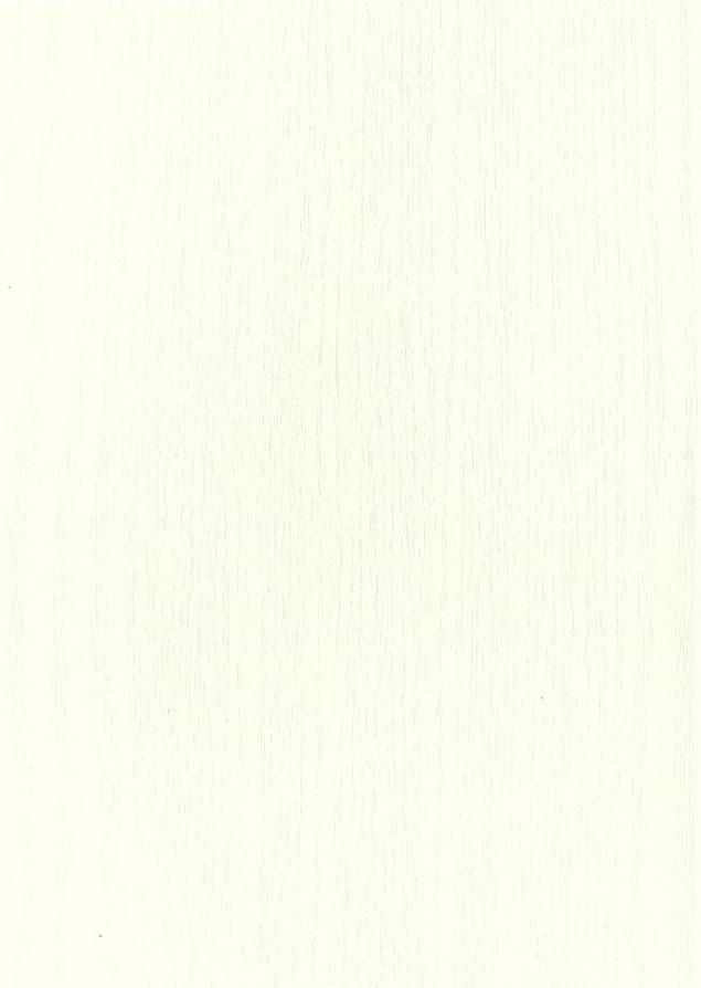 0085PO Holzpore weiß